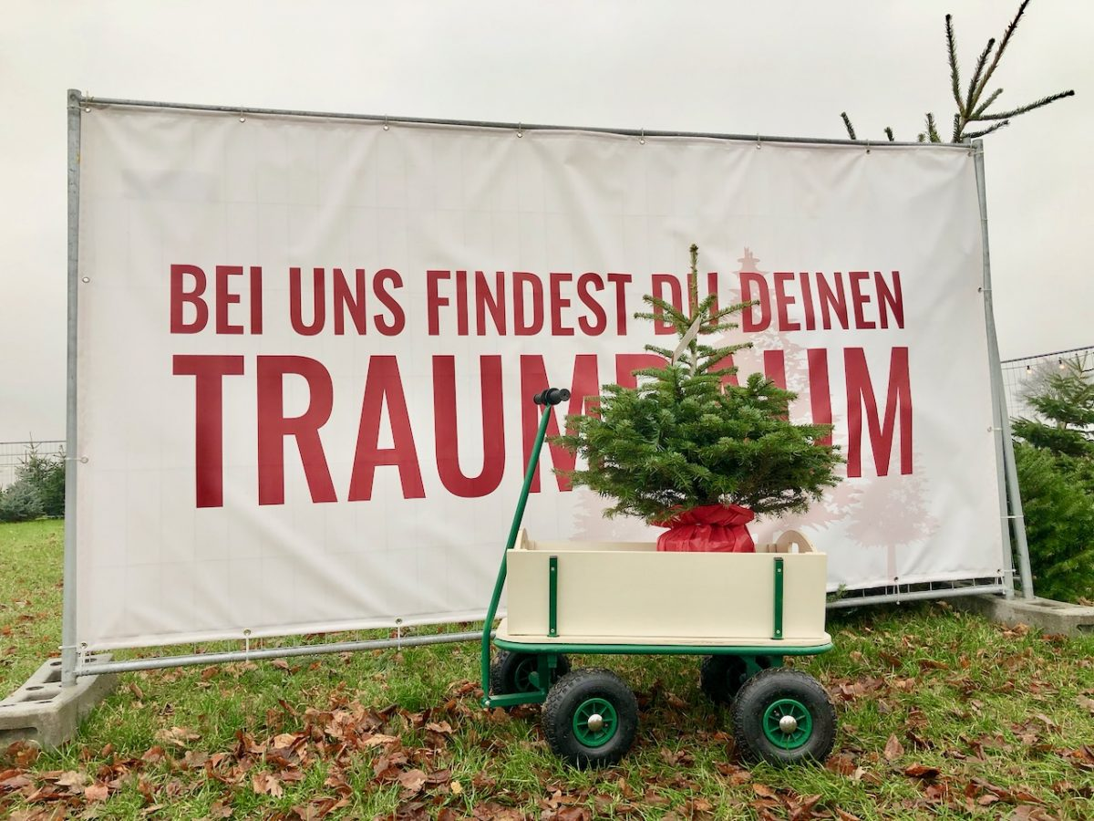 Lieblingstanne Weihnachtsbaumversand